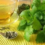 чай з меліси