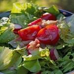 листя салату корисне