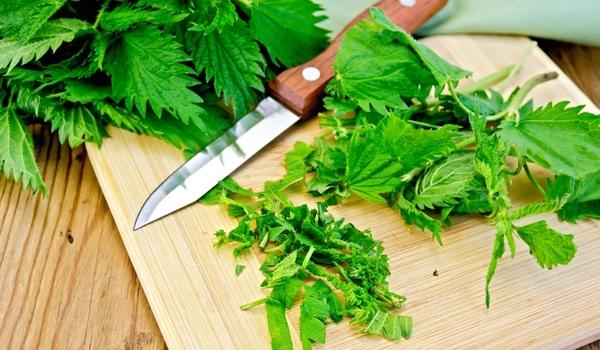 салат з кропиви, зелений борщ