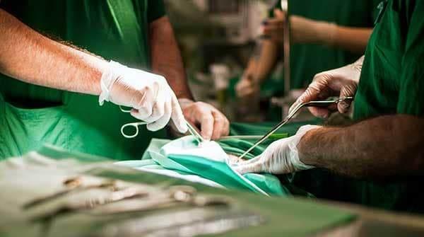 трансплантація члена