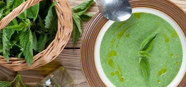 страви із кропиви мають вітаміни, крем-суп