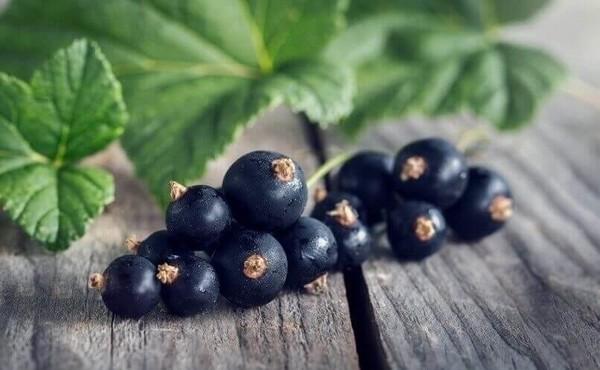 чорна смородина має вітамін ц